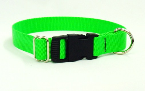 XL Dog Collars