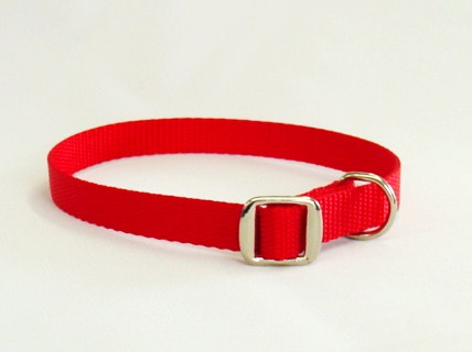 Small Dog Collar With Metal Buckle