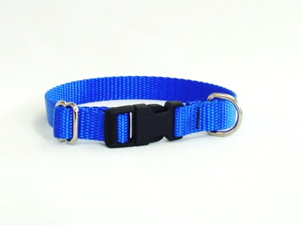 Small Dog Collar With Plastic Side-Release Buckle