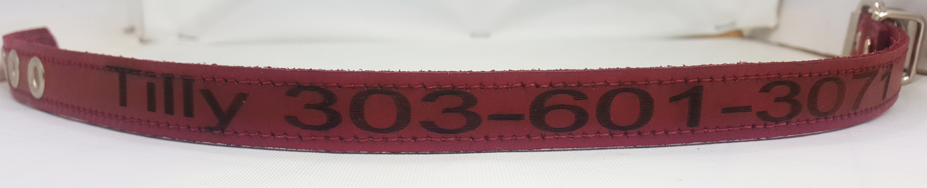 Small Engraved Leather Collars
