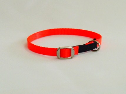 Cat Collar With Metal Buckle
