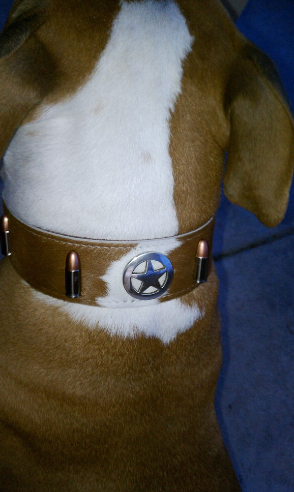 Hair-On Hide Leather Collars