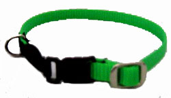 Cat Collar With Plastic Side-Release Buckle